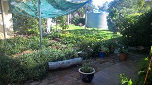 Carer RespiteAccommodation garden