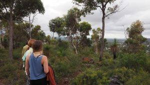 Retreat bush walk