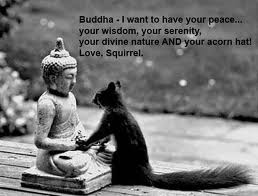 buddha & squirrel