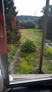 view of family garden